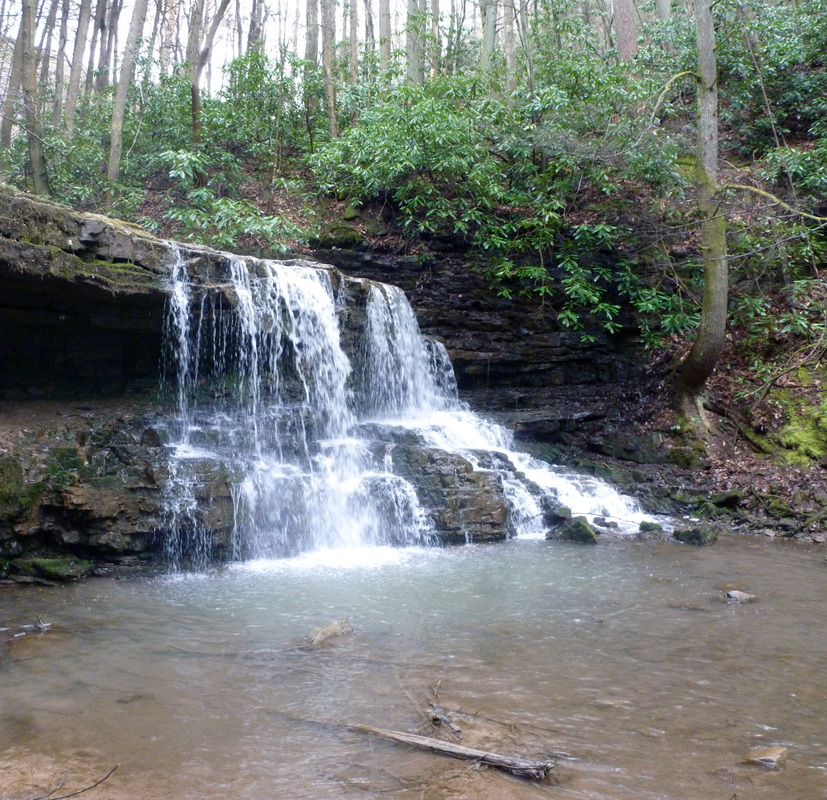 Warriors Path State Park Tn: The Monkey's Mask Presents: